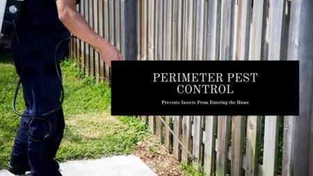 Perimeter Pest Management (PPM): It's Not All About Spraying P